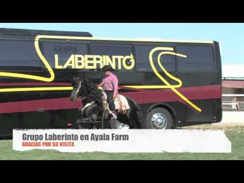 laberinto horse